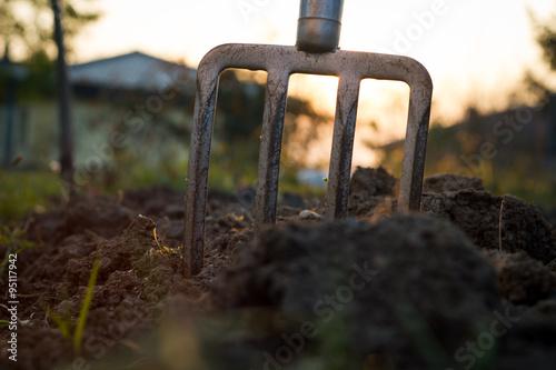 Fotografia, Obraz pitchfork stucks in the clay during sunset, gardening tools (fla