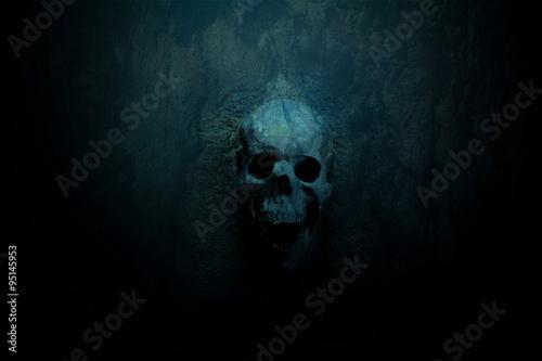 Cuadros en Lienzo Dark skull