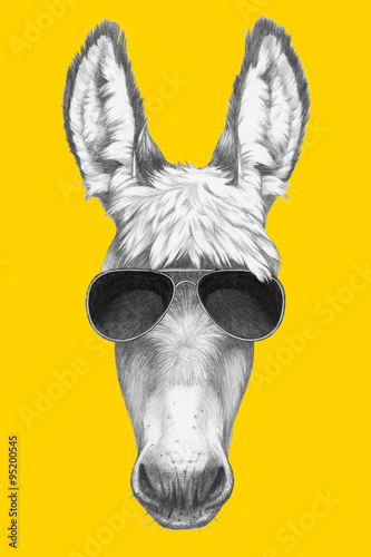 Fotografia Portrait of Donkey with sunglasses. Hand drawn illustration.