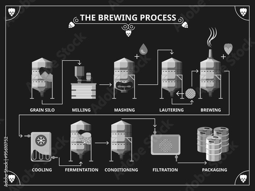 Fotomural Beer brewing process. Vector beer production infographic set
