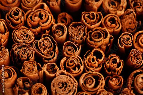 ceylon cinnamon Fototapete