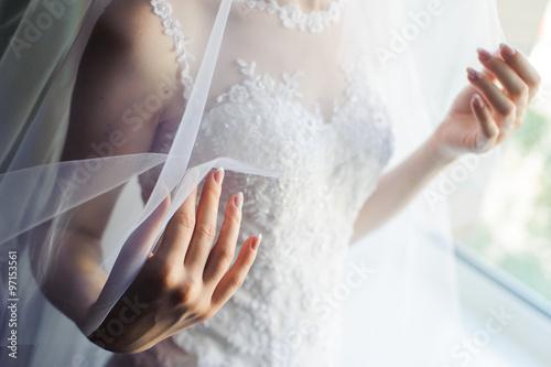 Photo Bride under veil