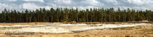 Pine forest and sand pit #97217187