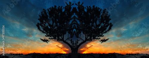 tree on sunrise background symmetry panorama #97305556