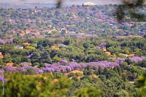 View over Johannesburg in October