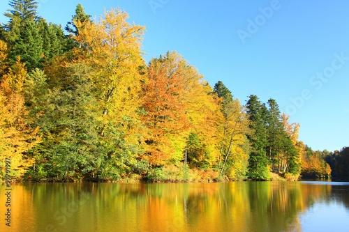 Beautiful landscape in fall #97791997
