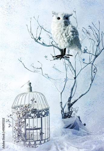 still life with owl  #98095533