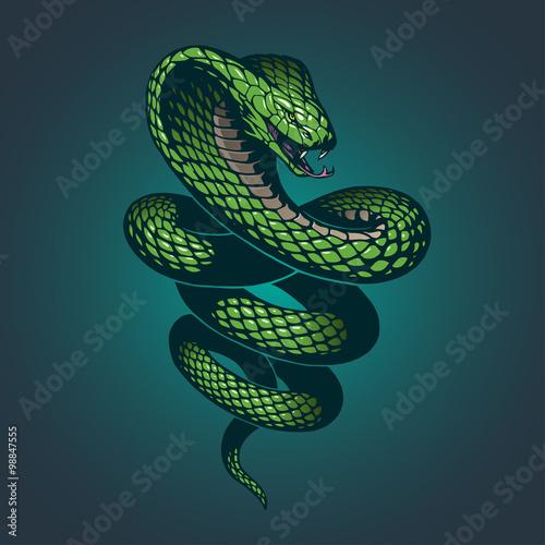 Canvas Print Snake illustration