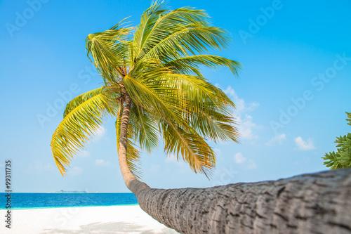 Obraz na płótnie Sand beach and ocean wave, South Male Atoll. Maldives