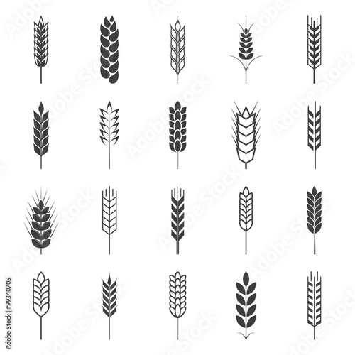 Canvas Print Set of simple wheat ears icons