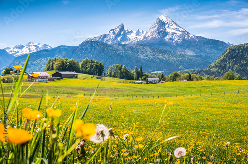 Idyllic landscape in the Alps with green meadows and flowers Fototapeta