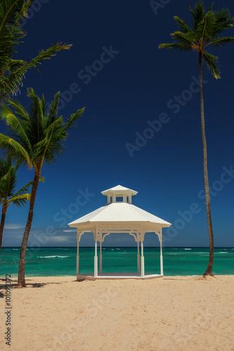 Photo Wedding set up and palm trees on tropical island.