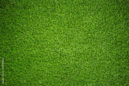 Fotografie, Obraz Umělá tráva