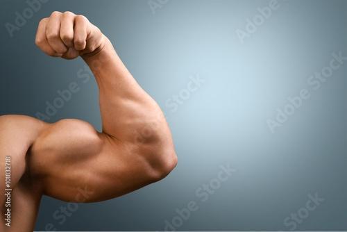 Valokuva Human Muscle.