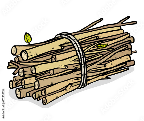 Fotografia bundle of firewood / cartoon vector and illustration, hand drawn style, isolated on white background