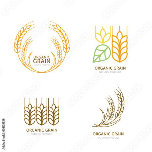 Fényképezés Set of organic wheat grain outline icons