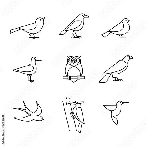 Fototapeta premium Zestaw ikon cienka linia ptaków