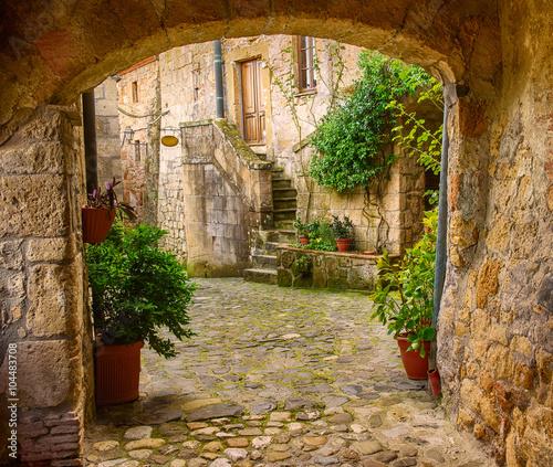 Fototapeta Wąska ulica średniowiecznego miasta Sorano z łukiem, zielonymi roślinami i brukiem, Włochy XXL