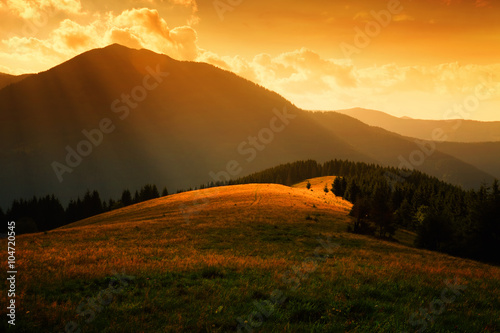 sun rays over the misty hills Fototapet