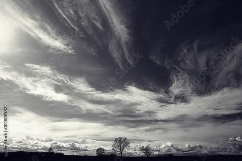 Fototapeta premium czarno-białe zdjęcie jesień krajobraz
