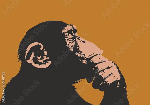Fototapeta Monkey