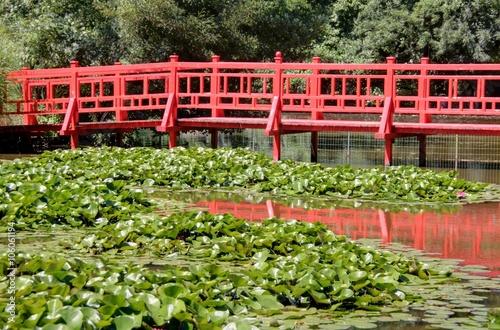 Obraz na plátně jardin japonais