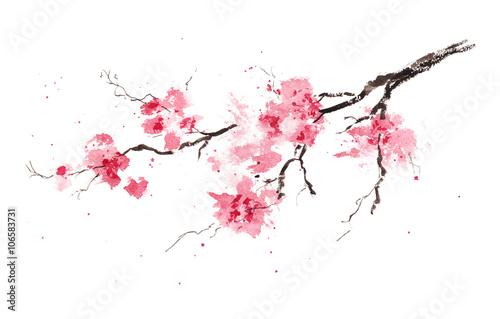 Fotomural Sakura branch. Original watercolor painting.