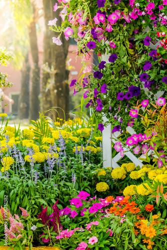 Flowers in the garden Fototapeta