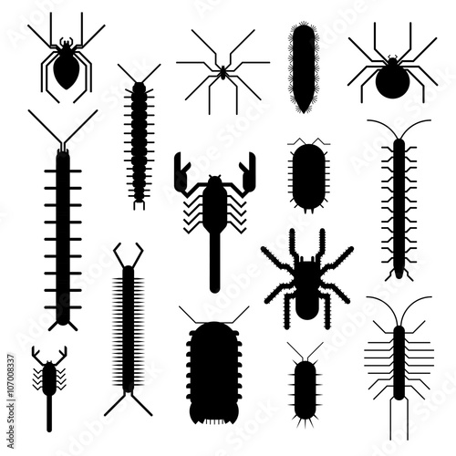 Cuadros en Lienzo Spiders and scorpions dangerous insects animals vector cartoon flat illustration