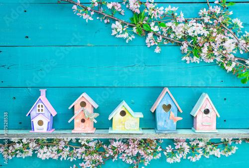 Obraz na płótnie Row of colorful birdhouses on shelf with spring blossoms border