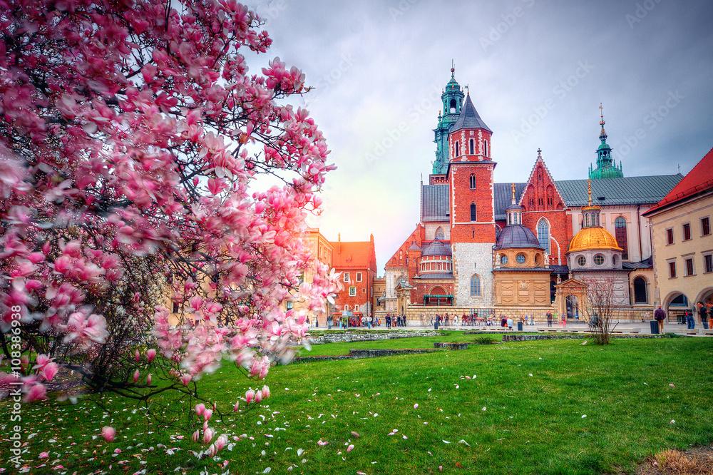 Zamek Królewski na Wawelu <span>plik: #108386938 | autor: Patryk Michalski</span>