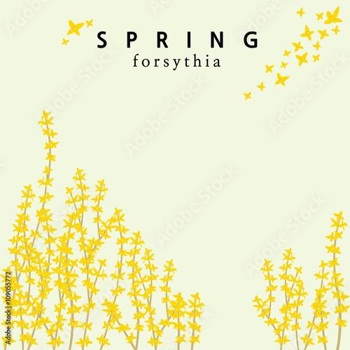 Fotografija A forsythia themed spring template