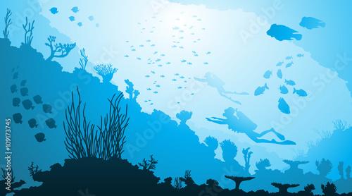 Nurkowanie podwodne i życie morskie