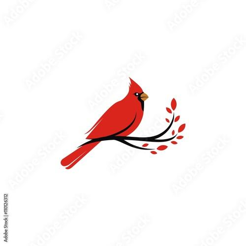 Cardinal logo vector Tapéta, Fotótapéta