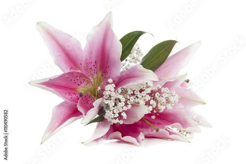 Tablou Canvas pink stargazer lily