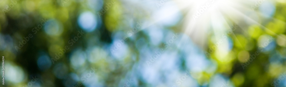 image of natural abstract background closeup