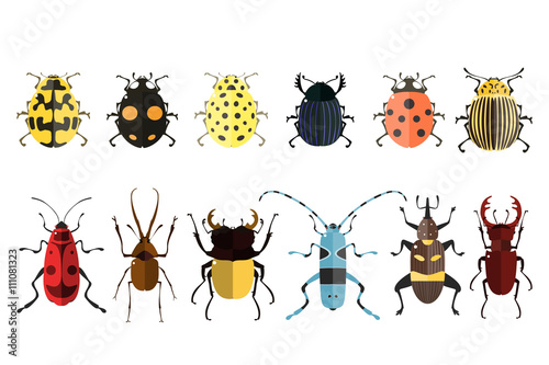 Canvas Bug icons. Insect set.