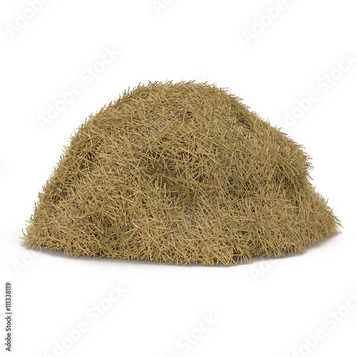 Tablou Canvas Hay pile isolated on a white background as an agriculture farm and farming symbol of harvest time with dried grass straw as a mountain of dried grass haystack