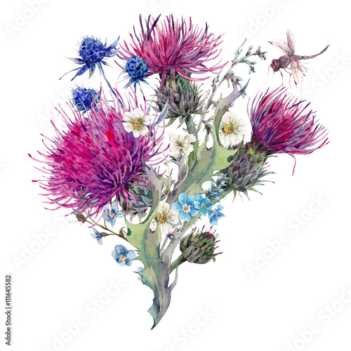 Valokuva Summer watercolor greeting card with wild flowers, thistles, dan
