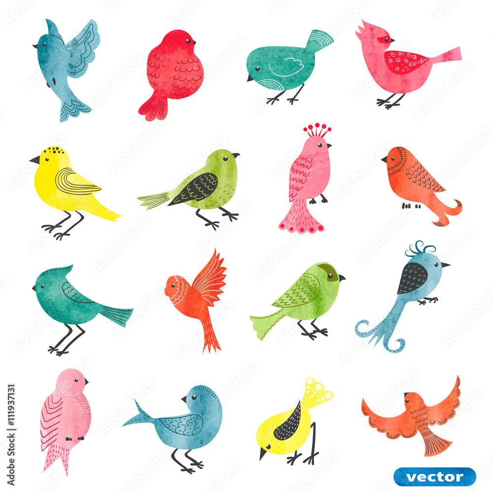 Zestaw ptaków akwarela. Kolekcja ptaków cute kreskówki. Ilustracji wektorowych. <span>plik: #111937131   autor: Afanasia</span>