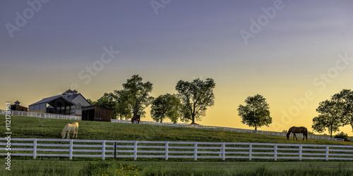 Vászonkép Kentucky farm at sunrise