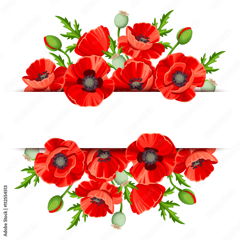 Vector background banner with red poppies. - obrazy, fototapety, plakaty