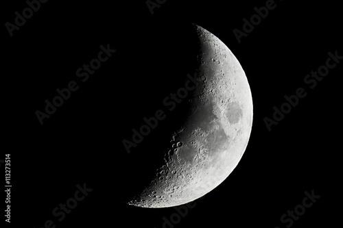 Vászonkép Moon detailed closeup