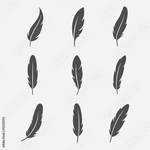 Fotografie, Tablou Feathers vector set