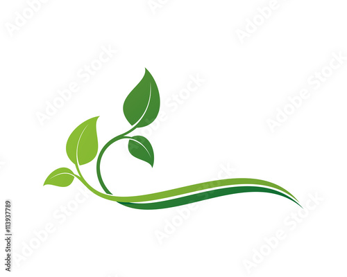 Canvas Print Leaf Ornament