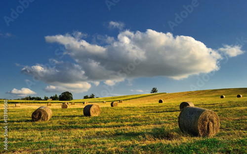 Valokuvatapetti Summer cloudy meadow with hay bales