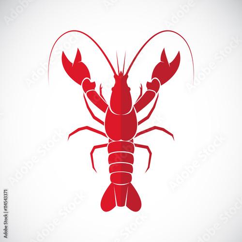 Fototapeta Vector of an lobster design on white background., Lobster.