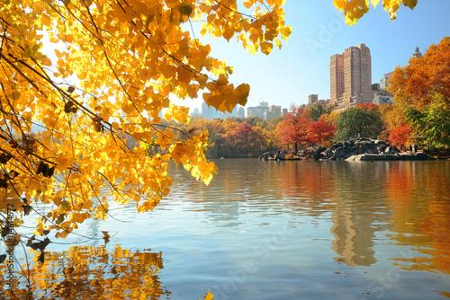 Foto Central Park Autumn
