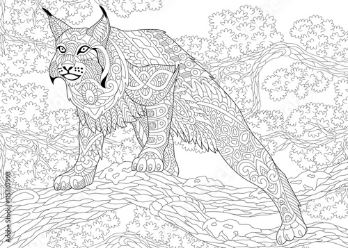 Fototapeta premium Zentangle stylized cartoon hunting wildcat (lynx, american bobcat, caracal) ready to attack. Hand drawn sketch for adult antistress coloring book page with doodle, zentangle, floral design elements.