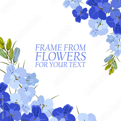 Photo Illustration with light blue and blue flowers, delphinium isolated
